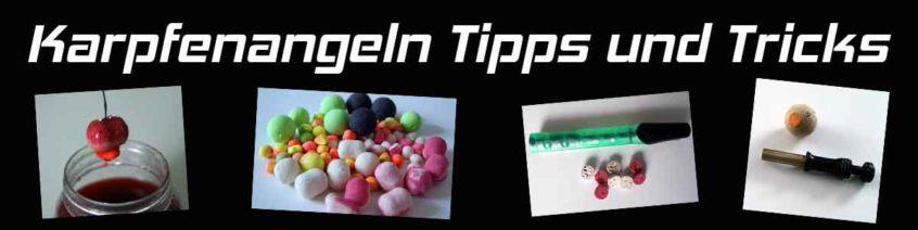 Karpfenangeln Tipps und Tricks